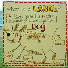 What is a Label? Adorable chart for introducing labels in non-fiction writing