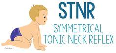 Symmetrical Tonic Neck Reflex (STNR)- Copyright ToolsToGrowOT.com
