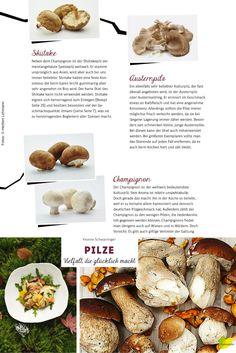 """Welche Pilze kann man bedenkenlos essen, vor welchen lässt man besser die Finger? In Yvonne Schwarzingers """"Natürlich koch ich! Pilze"""" findet ihr nicht nur großartige Rezepte, sondern auch praktische Steckbriefe der beliebtesten Speisepilze!"""
