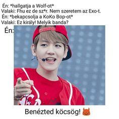 Exo Memes, Funny Memes, Kpop, Quote, Humor, Celebrities, Pictures, Jokes, Quotation