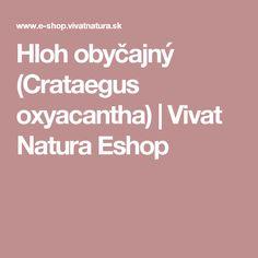 Hloh obyčajný (Crataegus oxyacantha) | Vivat Natura Eshop
