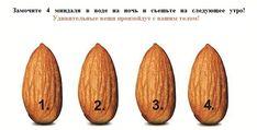 Миндаль — настоящее естественное чудо, так как он богат витаминами и минералами, включая витамин Е, магний, цинк, кальций и омега-3 жирные кислоты.
