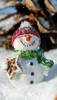 35 Fun and Creative Christmas Snowman Crafts What Is Christmas, Christmas Snowman, Simple Christmas, Christmas And New Year, Christmas Themes, Christmas Ornaments, Merry Christmas, Christmas Countdown, Winter Christmas