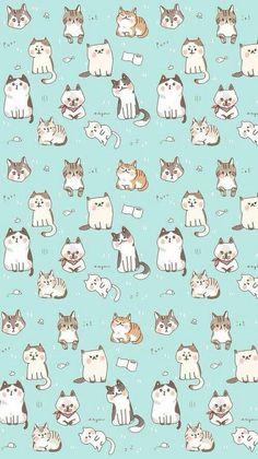 gatos ❤️