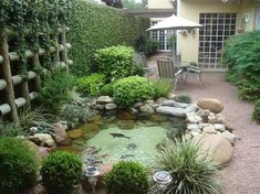 private courtyard with water feature. Like the green vines that help create visual softness and help keep sounded buffeted.