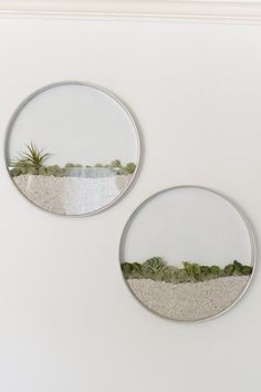 This 22 inch round diameter hanging wall planters is handmade specifically for succulents and air plants. They look smart on a wall and can be