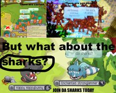 JOIN THE SHARKS TODAY ON ANIMAL JAM