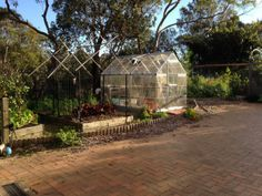 Greenhouse and vegetable garden bed | Simple Crafty Life -- an autumn garden gallery