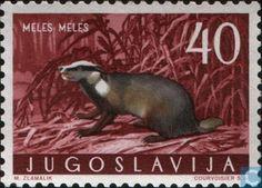 1960 Yugoslavia - Animals