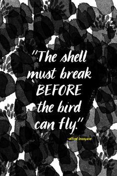 The shell must break // shutterbean #quotes