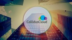 Callidus offers computer applications to help millions of cloud platform users across the nation every day to efficiently extract business intelligence information for their business so they can ef…