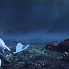 Is it me, or is it sort of strange seeing the Light Fury with a FULL tail ?*glances nonchalantly in Hiccups direction*