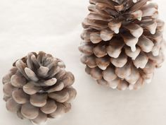 Fire starter. Not only is this adorable, but it's practical, too. These pinecone are dipped in beeswax, which helps get the flames rolling in the fireplace on a cold winter night