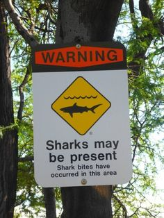 sharks may be present, or maybe not.