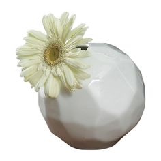 Global Views Snowball Bud Vase | AllModern