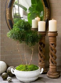 Beautiful bathroom Vignette with topiaries and candles