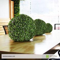 ¡Renueva la apariencia de tu hogar con Ranka!  Tenemos las mejores esferas decorativas de apariencia 100% natural. Tamaños disponibles: 26 cm y 40 cm.  Compra en línea ➜ www.ranka.mx Envíos a todo México de 1 a 7 días hábiles.