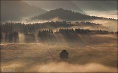 Morning rays by jvphotosCZ on 500px