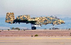 A10 in experimental camouflage. I  have always loved this all-over scheme.