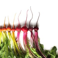 Brittany Wright est une photographe spécialisée dans la photographie culinaire. Son hobby est de classer les légumes par couleurs ou maturité pour créer des dégradés colorés.Originaire de Seattle, Brittany réalise des prises de vue aussi graphiques qu\\\'originales. Suivi par plus de 90 000 sur Instagram, la photographe a conquis l\\\'ensemble ...