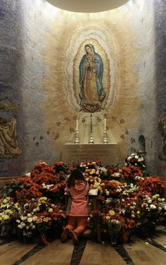 Behold Thy Mother! On 12th December 1531, Tepayac Hill was miraculously covered with Castilian roses. So, too, people began to fill with flowers the chapel of Our Lady of Guadalupe in the National Shrine in Washington DC