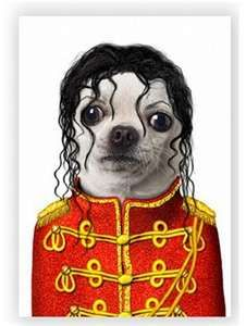 /pets-as-celebrities-greeting-cards.html