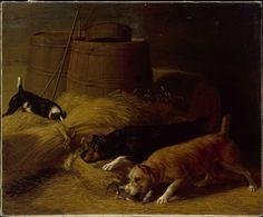 Rats amongst the Barley Sheaves  Published 1851