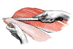 How to filet a fish - should be useful on the boat!