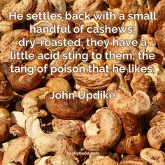 He settles back with a small handful of #cashews; dry-roasted they have a little acid sting to them the tang of poison that he likes. John Updike #quote