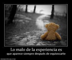 Lo malo de la experiencia es que aparece siempre después de equivocarte