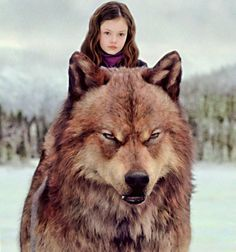Taylor Lautner and Mackenzie Foy as Jacob & Renesmee from The Twilight Saga: Breaking Dawn - Part 2 Film Twilight, Twilight Renesmee, Twilight Saga Series, Twilight Breaking Dawn, Twilight New Moon, Breaking Dawn Part 2, Twilight Songs, Jacob Black Twilight, Breaking Bad