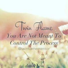 Twin Flame Do Not Control The Process