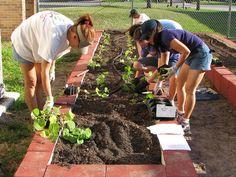 Preparar la tierra para sembrar es facilísimo. ¡Toma nota!