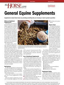 The Horse | Equine Supplements | TheHorse.com