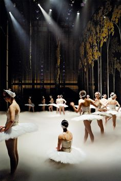 I never miss a chance of attending a ballet performance .. ~ Law and Fashion -Criminal Intent-