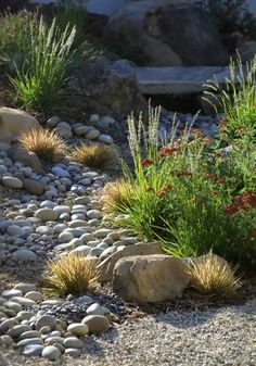 with River Rock Dry River Rock Garden Ideas Create a beautiful and low maintenance garden incorporating river rock landscaping with a dry stream and using river rock to. Garden Design, Xeriscape, River Rock Garden, River Rock Landscaping, Hardscape, Landscape Design, Low Maintenance Garden, Mediterranean Landscaping, Landscape
