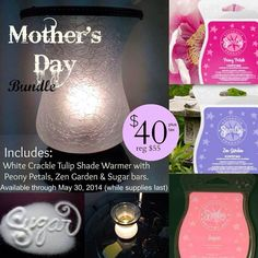 Mother's Day bundle!! https://whatswarming.scentsy.us