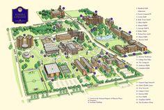15 Best Campus images