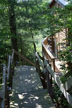 Avoid large crowds and stay in your own private cabin! We are sanitizing our little hearts out for your safety! Red River Gorge, Natural Bridge, Cabin Rentals, Garden Bridge, Outdoor Structures, Sunset, Nature, Sunsets, Naturaleza