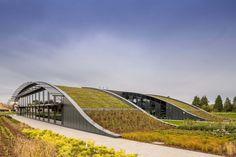 Telhado verde promove a biodiversidade e a eficiência energética neste edifício