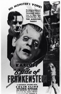 """Bride of Frankenstein """"We are better dead! Classic Movie Posters, Classic Horror Movies, Horror Movie Posters, Horror Films, Scary Movies, Old Movies, Vintage Movies, Famous Monsters, Cool Monsters"""
