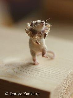Mouse Betsy/ Tireless Artist