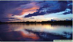 Amazônia - Anavilhanas Jungle Lodge - Velhinho é a Mãe! - Venturas