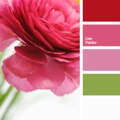 # ColorTrend2015 Princess Palet #designmaster @dmcolor @dmcolortools #Color www.dmcolor.com