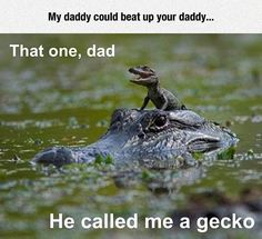 There, Dad http://ibeebz.com