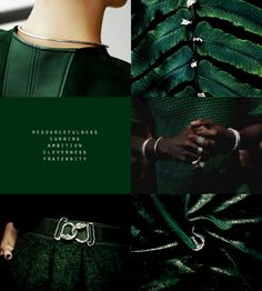 Hogwarts House Aesthetics - Slytherin