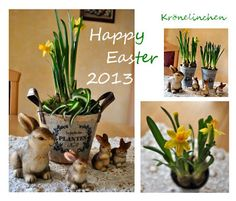 Krönelinchens Hobbys: Friday- Flowerday # 2 (für mich) Happy Easter, Plant, Hobbies, Gifts, Happy Easter Day
