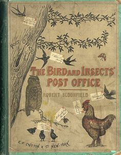 Birds and Insects Post Office - Friday Favorites - Living Vintage