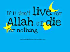 live for Allah (swt)