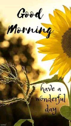 Good Morning Sun, Good Morning Beautiful Pictures, Good Morning Quotes For Him, Good Morning Images Flowers, Good Morning Beautiful Quotes, Good Morning Images Hd, Good Morning Texts, Good Morning Picture, Good Morning Messages
